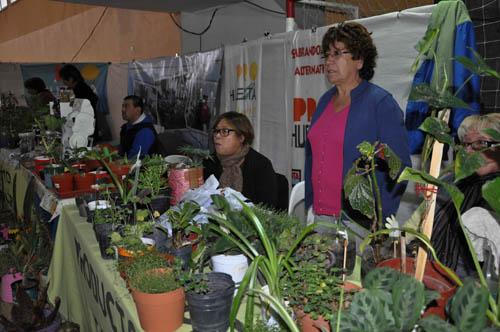 Feria Productiva Municipal